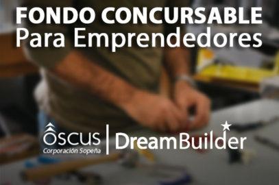 Descarga aquí las bases de este Fondo Concursable para Emprendedores.